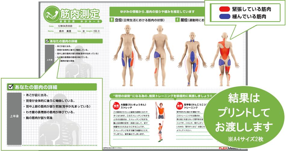 筋肉測定見本